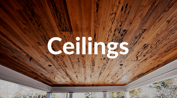 ceilings graphic (1)
